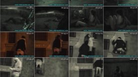 Night spy public voyeur sex at night porn clip 1 screenlist