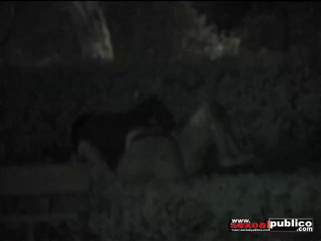 couple fuck at night on floor