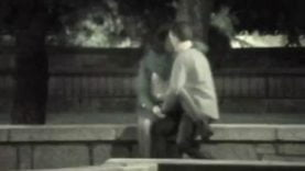 kissing and fucking voyeur in park 31 (2)
